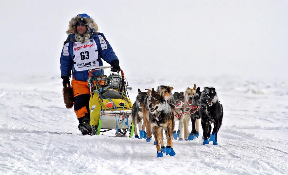 Michi Konno, dog musher and his team